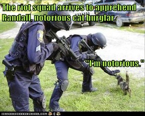 """The riot squad arrives to apprehend Randall, notorious cat burglar.                                                                                            """"I'm notorious."""""""