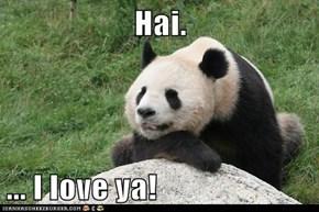Hai.   ... I love ya!