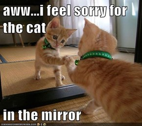 aww...i feel sorry for the cat  in the mirror