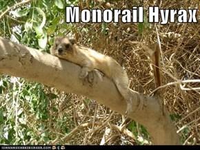 Monorail Hyrax
