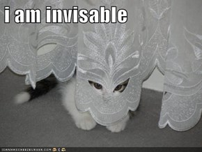 i am invisable