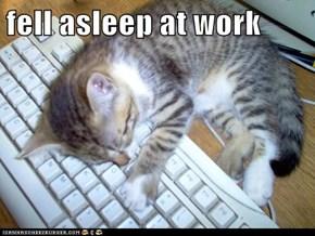 fell asleep at work