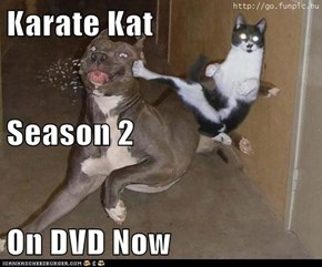 Karate Kat Season 2 On DVD Now