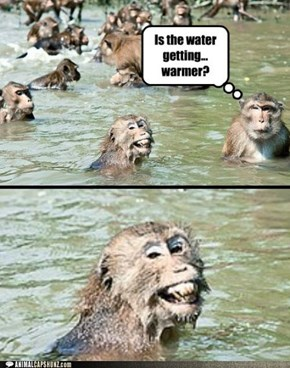 Animal Capshunz: I Have No Idea What You're Insinuating