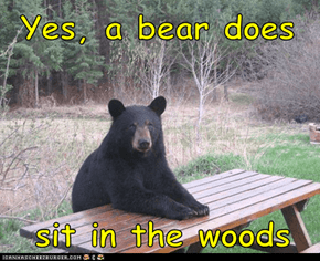 Yes, a bear does    sit in the woods