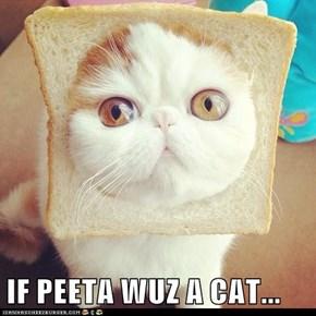 IF PEETA WUZ A CAT...
