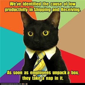 Business Cat: They Deserve a Raise