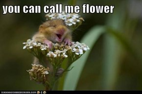 you can call me flower