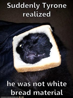 Suddenly Tyrone realized  he was not white bread material