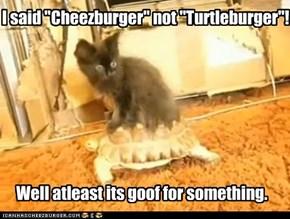 I said Cheezburger, not Turtleburger