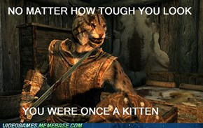 Tough Guy Khajiit