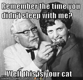 Remember the time you didn't sleep with me?  ...Well this is your cat