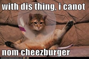 with dis thing, i canot  nom cheezburger