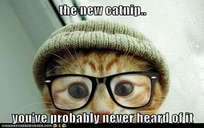 the new catnip..  you've probably never heard of it