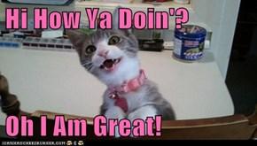 Hi How Ya Doin'?  Oh I Am Great!