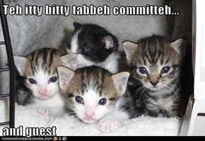 Teh itty bitty tabbeh committeh...  and guest