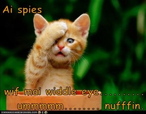 Ai spies  wif mai widdle eye..........  ummmmm........ nufffin.