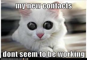 my new contacts  dont seem to be working