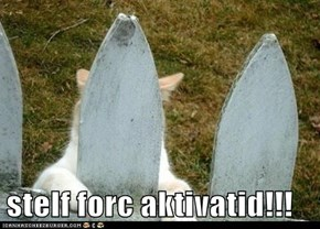 stelf forc aktivatid!!!