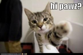 hi pawz?