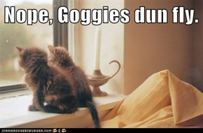 Nope, Goggies dun fly.