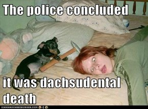 The police concluded  it was dachsudental death