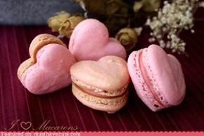 Epicute: Macaron Love