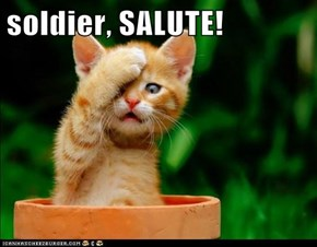 soldier, SALUTE!