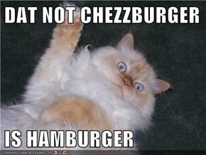 DAT NOT CHEZZBURGER  IS HAMBURGER