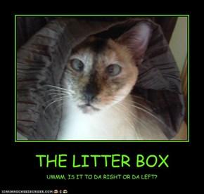 THE LITTER BOX