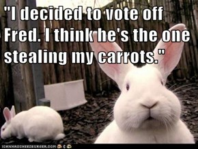 """I decided to vote off Fred. I think he's the one stealing my carrots."""