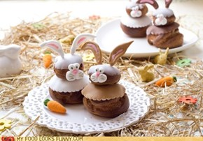 Sweety bunnies
