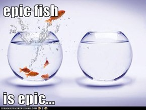 epic fish  is epic...