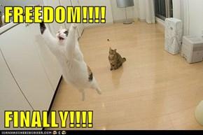 FREEDOM!!!!  FINALLY!!!!