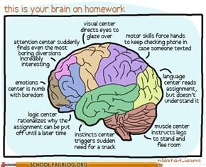 Don't Do Homework Kids.