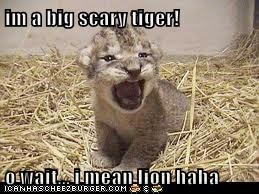 im a big scary tiger!  o wait... i mean lion haha