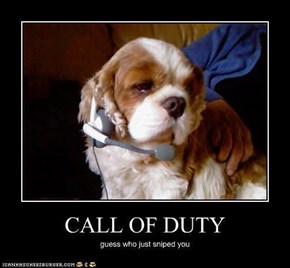 Call Of Duty..... who doesn't love it?