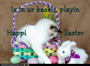 Iz in ur baskit, playin Happi                   Easter