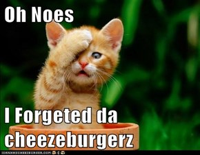Oh Noes   I Forgeted da cheezeburgerz