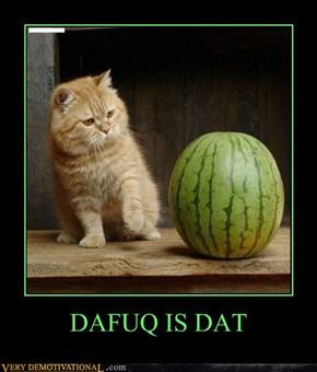 DAFUQ IS DAT