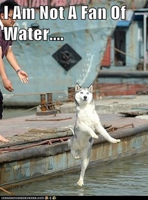 I Am Not A Fan Of Water....