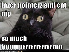 lazer pointerz and cat nip  so much fuuuuurrrrrrrrrrrrnn