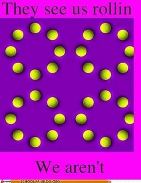 Optical Illusions 101: GOTCHA