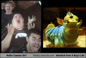 Roller Coaster Girl Totally Looks Like Heimlich from A Bug's Life