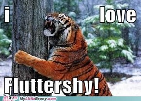Brony Tiger is Brony