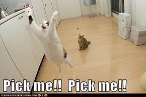 Pick me!!  Pick me!!