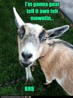 Wen Yu Gotta Goat... Yu Gotta Goat.