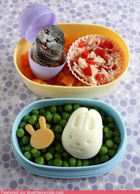 Epicute: Hoppy Easter Bento