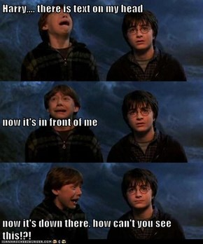 Harry! The Captions Are Everywhere!