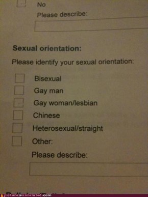 That's What I Call a Sexual Orient-ation